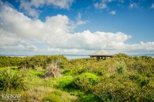 Vogelkijkhut in Nieuw-Zeeland